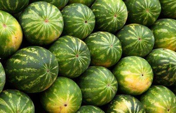 Вариант называют «магазинным», плоды часто хранят в соломе на овощных базах