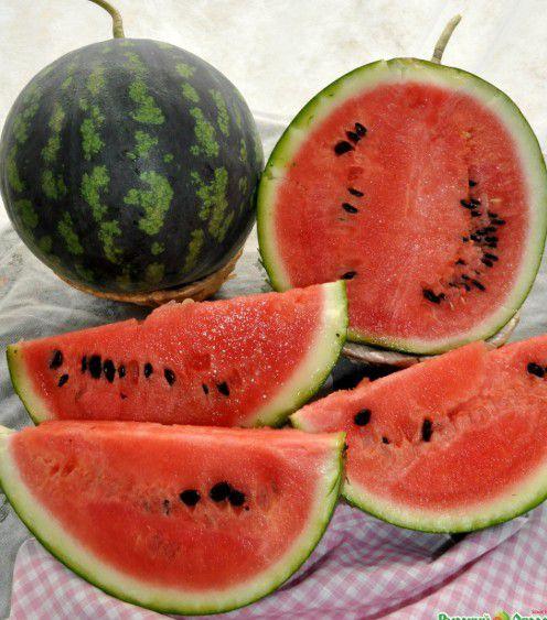Температура для дозревания снятого плода составляет +20…25 градусов Цельсия