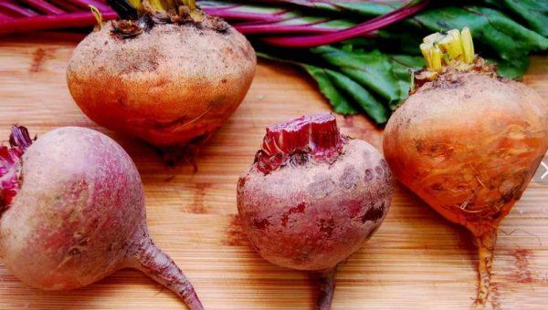 Главное – выбрать лёжкий сорт, подготовить овощ к длительному сбережению и обеспечить правильный температурный режим