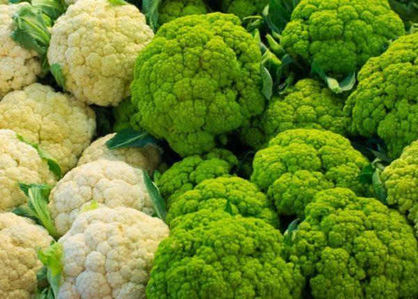 Сбор урожая цветной капусты выпадает на первые числа июля