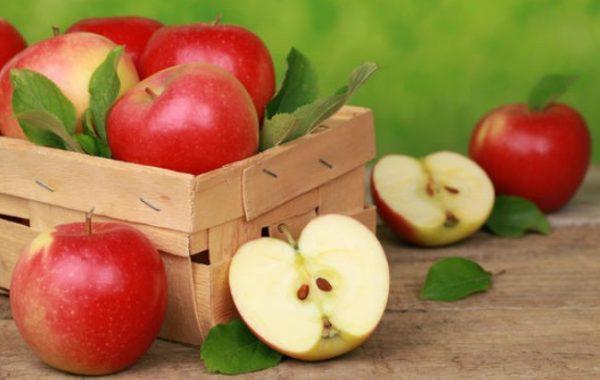 Летние и осенние яблоки зиму не пролежат
