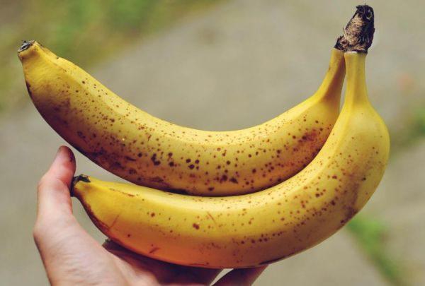 Из-за сложностей транспортировки в магазин часто привозят бананы зелеными, незрелыми