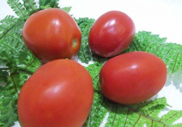 В качестве тары для сбережения помидор используются ящики, банки, солома, холодильник