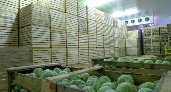 Сухие овощи обязательно сортируют