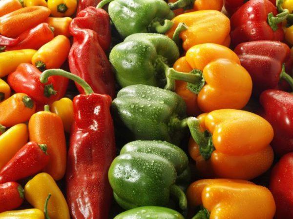 При температуре хранения +2 градуса свежие овощи семья сможет есть вплоть до января