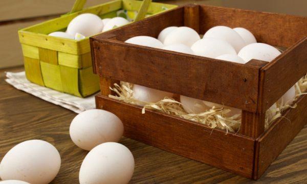 Среди деревенских жителей популярно хранение яиц в негашеной извести