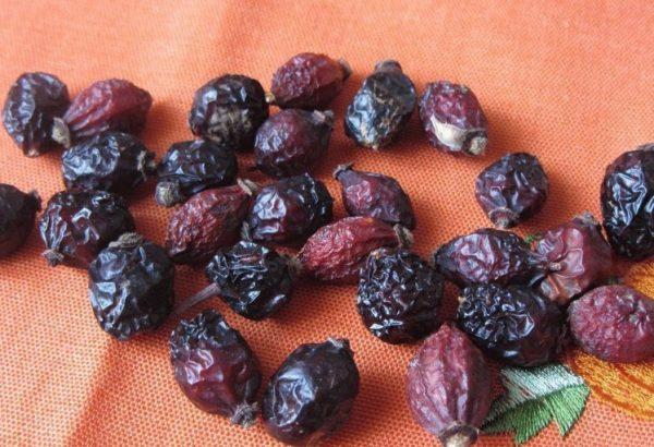 При длительном хранении рекомендуется проводить периодическую проверку сушёных плодов на наличие плесени