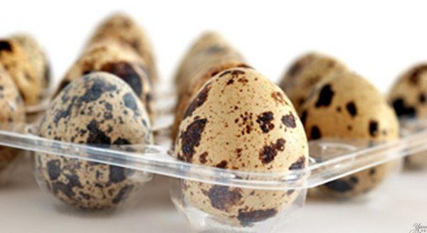 Яйца сохраняют полезные качества приблизительно два месяца