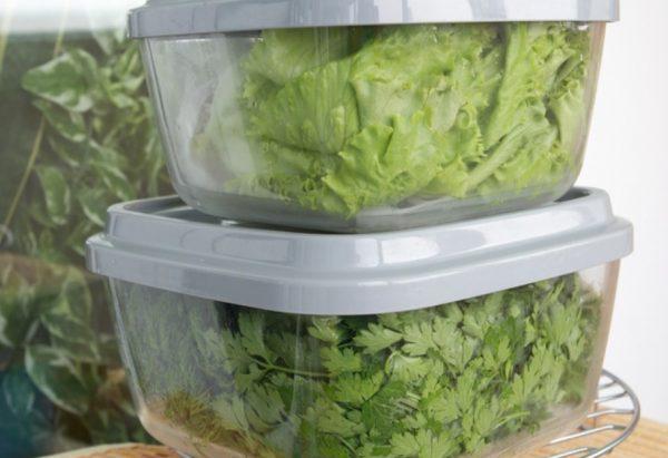 Чаще всего принесенные зелень хранят в холодильнике