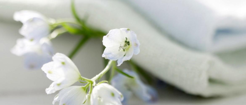 Белизна ее состав и характеристики применение в быту