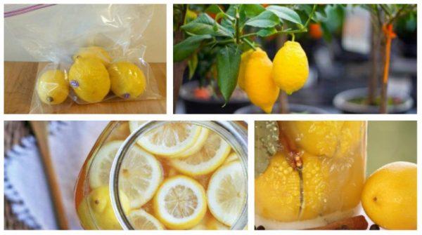 Способы длительного хранения лимонов