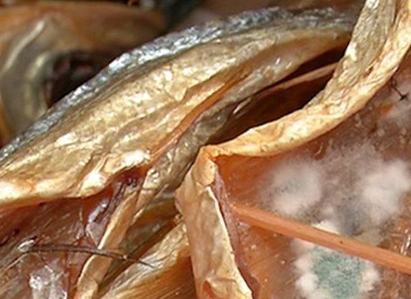 Даже при дотошном соблюдении технологии хранения рыба портится раньше срока