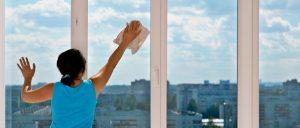 Керхер для мытья окон и стекол устройство, инструкция по применению