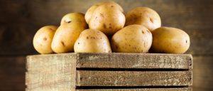 Как заморозить свежие баклажаны на зиму дома 7 вариантов