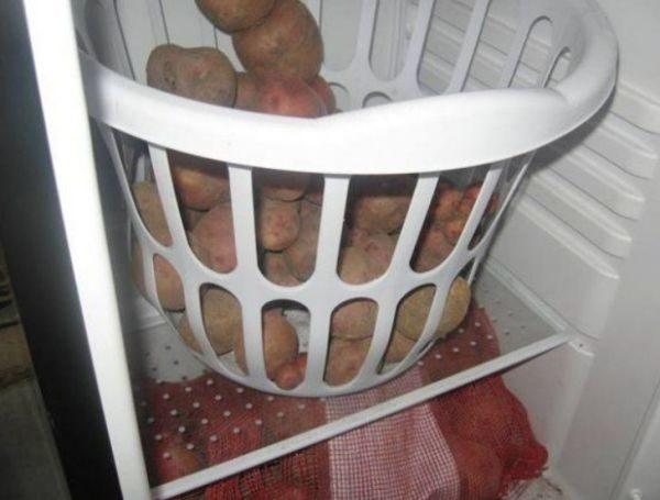 При хранении в холодильнике картофель приобретает сладкий привкус