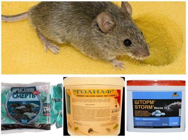 Средства от крыс и мышей