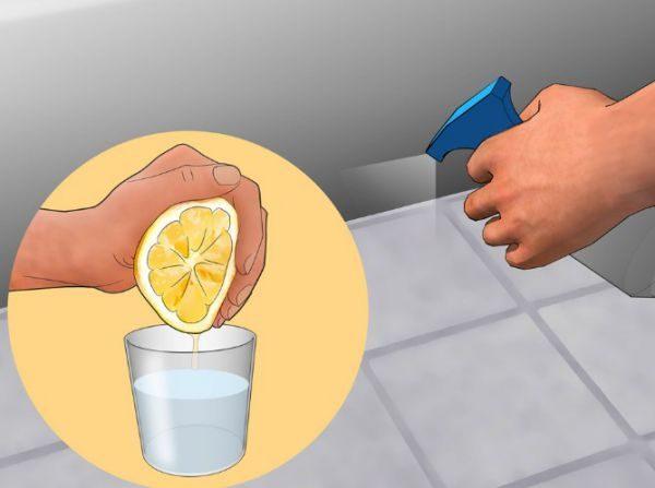 Самым малоэффективным способом борьбы является применение апельсиновой цедры и свежих огурцов