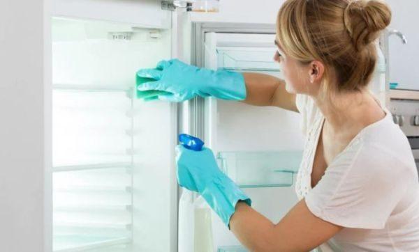 Некоторые хозяйки используют для очистки холодильниказубную пасту с выраженным мятным ароматом