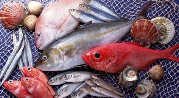 Срок хранения и условия хранения рыбы по санитарным нормам