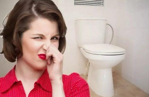 Запах в туалете, как избавиться: основные причины и эффективные способы устранения