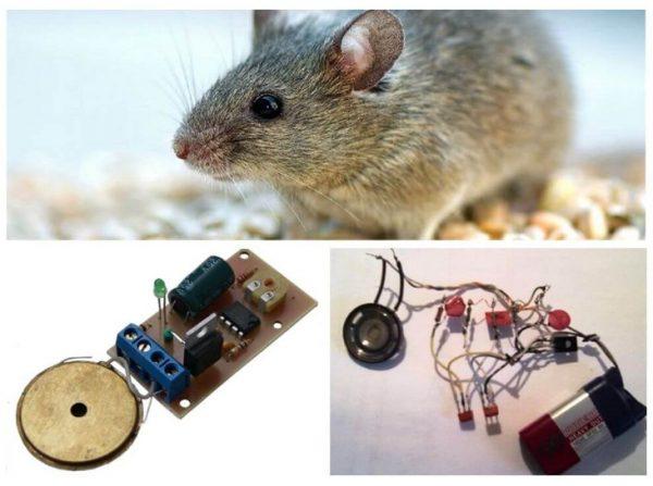 Ультразвуковые устройства от мышей и крыс