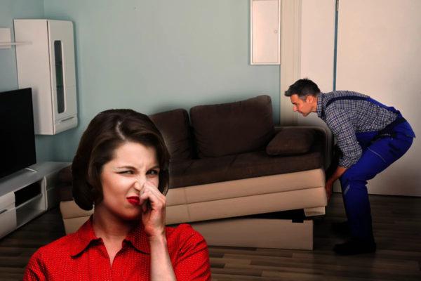 Почему новая мебель пахнет?